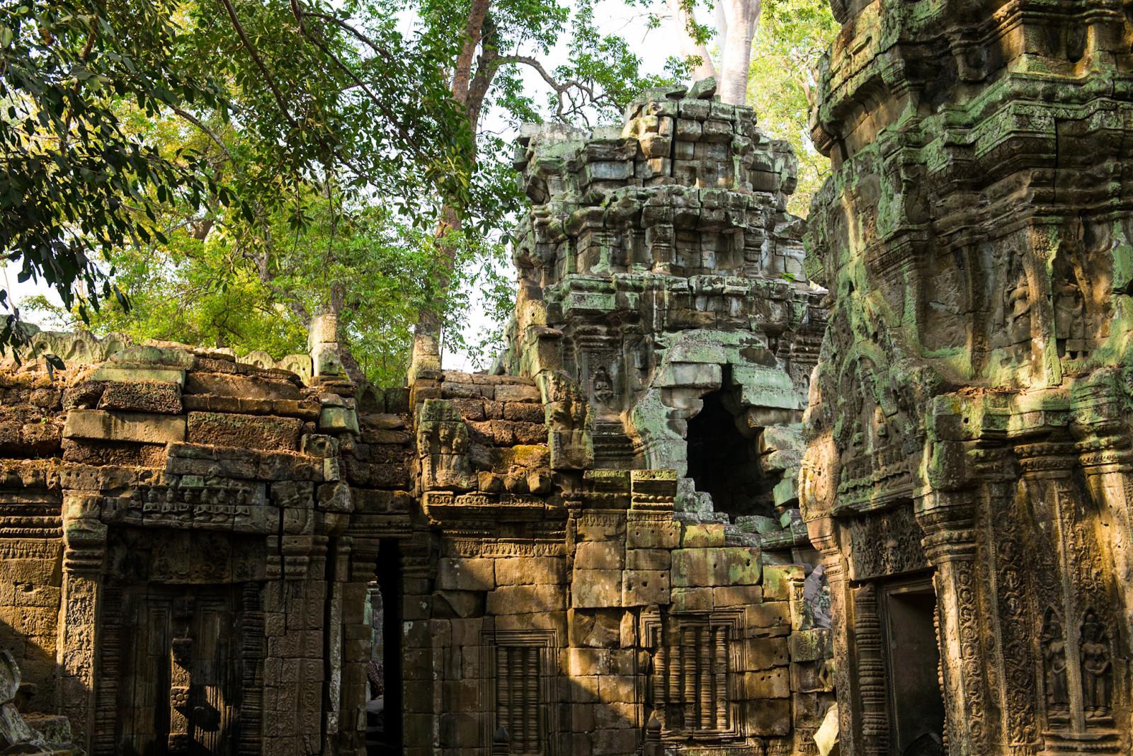 cambodia-photo-tours-ta-prohm-temple