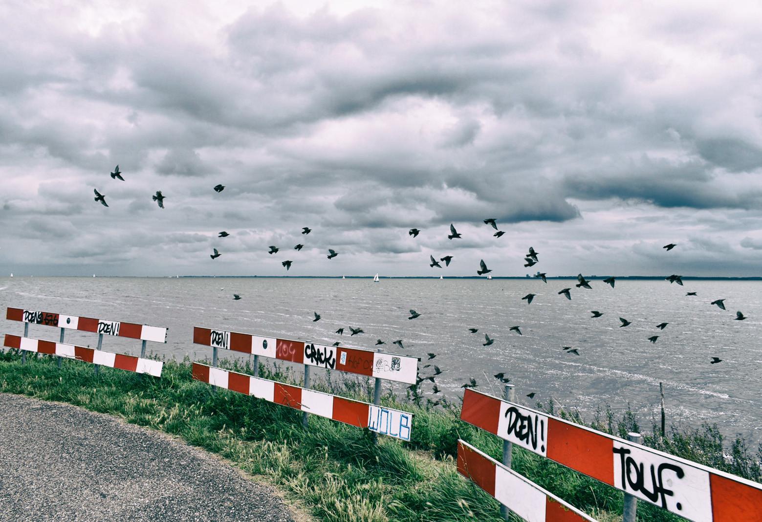 dutch-dikes-views